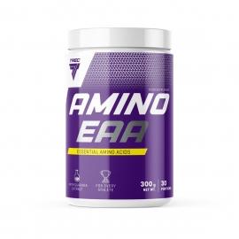AMINO EAA 300г